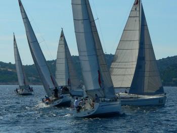 Sailin_Business_Cup