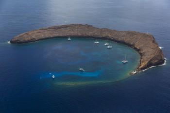 beginning-dive-sites-molokini