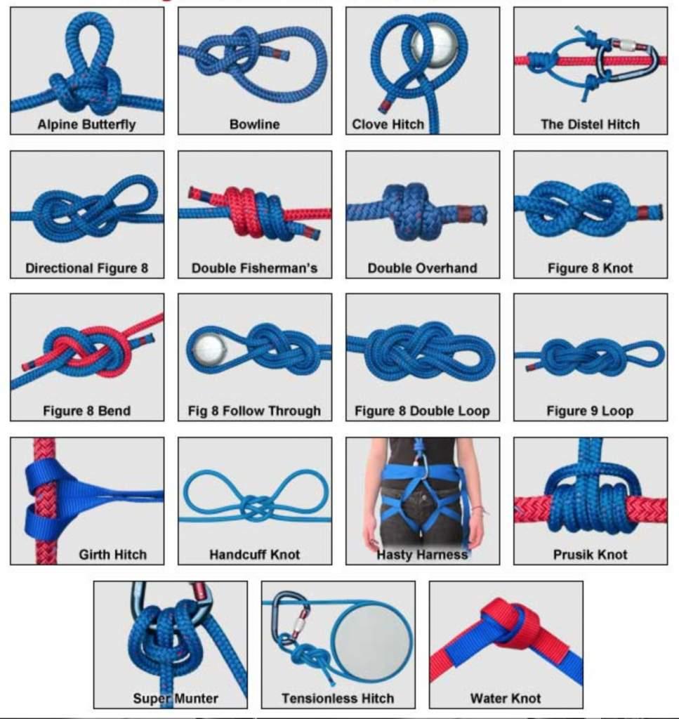 knots1