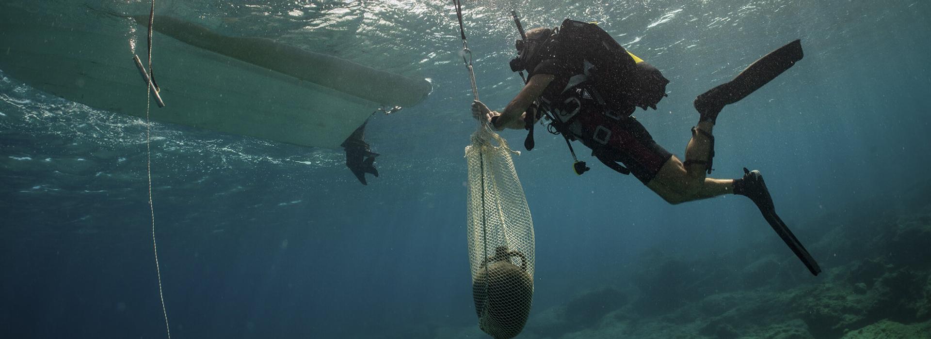 Kincseket találtak az Égei-tengerben